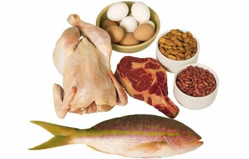 10 самых белковых продуктов